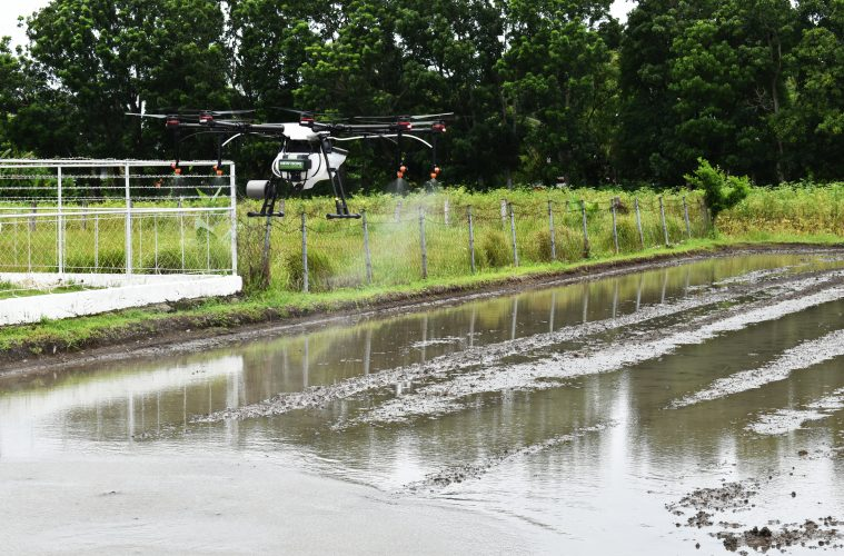 Agricultural drones introduced to Iloilo rice farmers