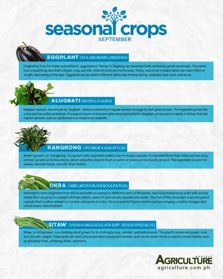 September abundant crops