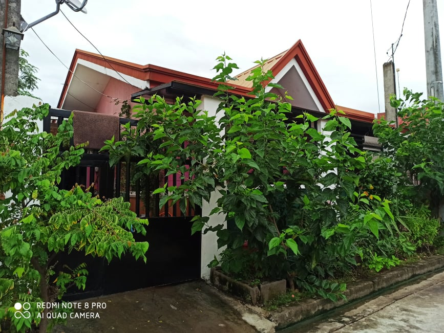 Moving To Bulacan Turned A Manager S Gardening Dream Into A Reality Agriculture Monthly