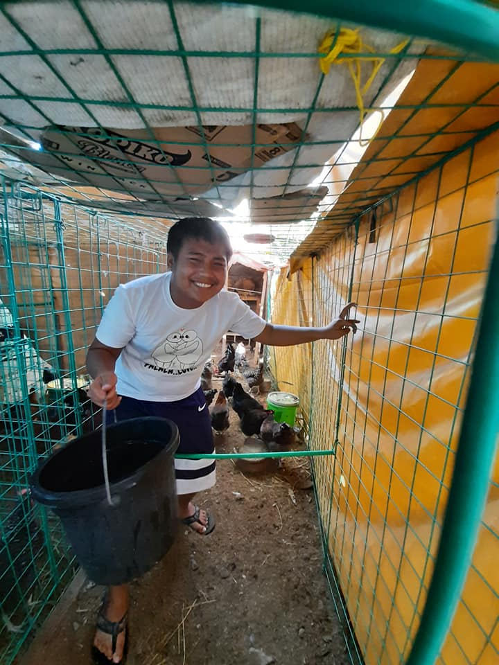 3 The couples son helping in their chicken raising venture. - A couple invested in an urban chicken farm to foster food security and sustainability, part 1