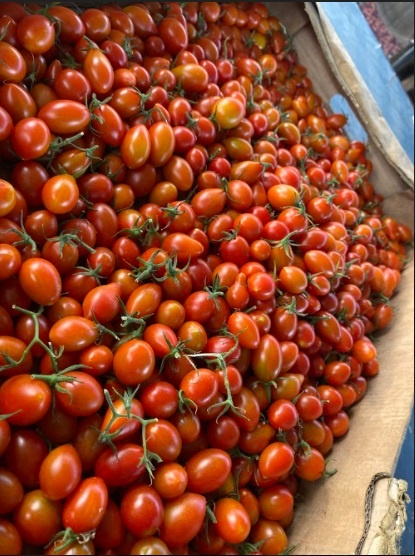 4 SowFresh also offers different varieties of tomatoes among other fresh produce.