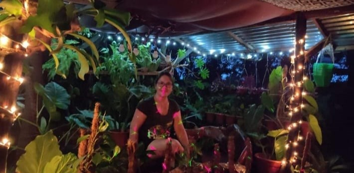 Longtime gardener shares her methods in growing philodendrons